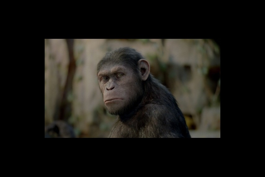 /db_data/movies/planetoftheapes2/scen/l/1-Picture19-05b.jpg
