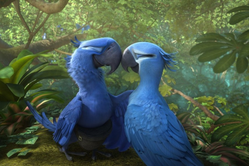 /db_data/movies/rio2/scen/l/1-Picture17-3a5.jpg
