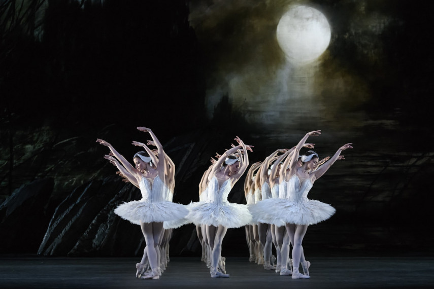 /db_data/movies/royaloperahouseswanlake2019/scen/l/43698840580_d72f6979f1_b.jpg