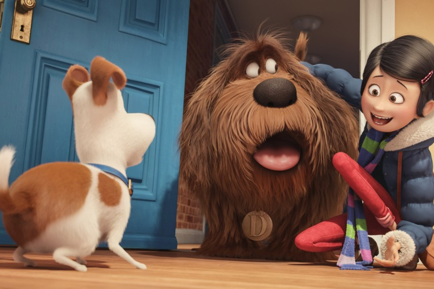 /db_data/movies/secretlifeofpets/scen/l/Max_Duke_and_Katie_Louis_C.K._.jpg