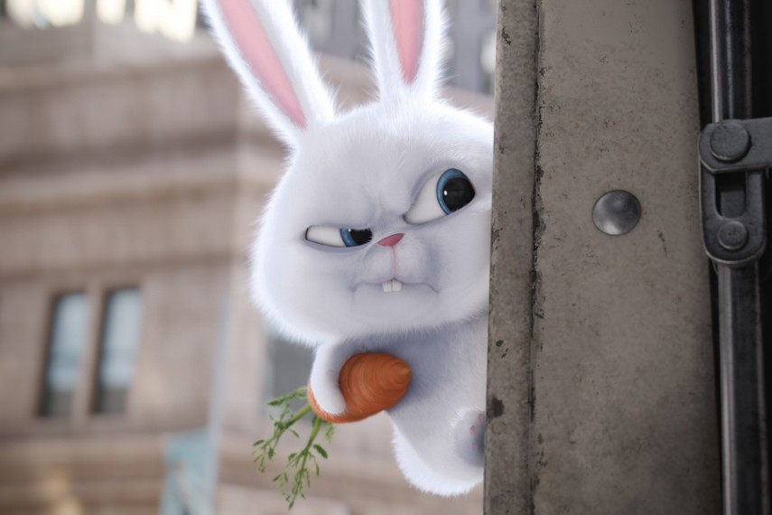 /db_data/movies/secretlifeofpets/scen/l/Snowball.jpg
