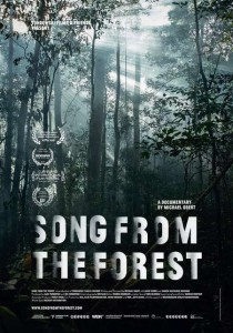 Song from the Forest, Michael Obert