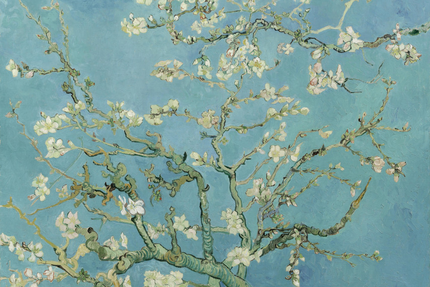 /db_data/movies/vangoghandjapan/scen/l/Van Gogh Almond Blossom February 1890.jpg
